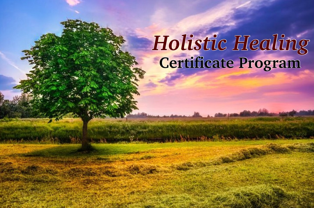 Holistic Healing Certificate Program Holistic Occupational Therapy