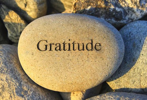 "Holistic OT ""Attitude of Gratitude"" Happy Thanksgiving 2014!"