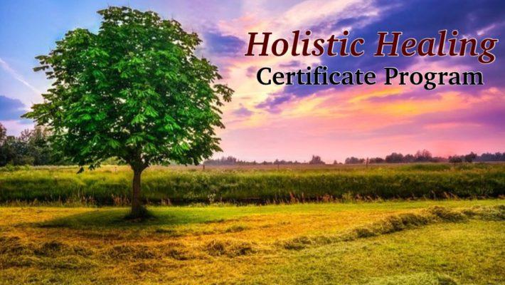 Holistic Healing Certificate Program
