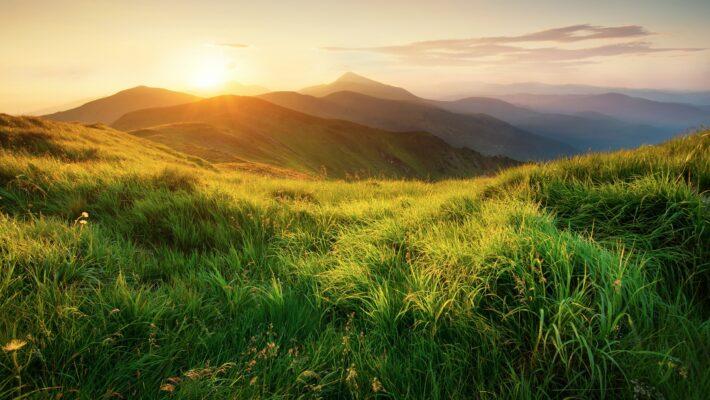 Nature Through An Occupational Lens